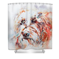 Labradoodle Shower Curtain by Stephie Butler