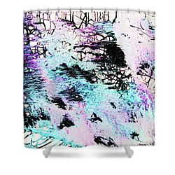 Shower Curtain featuring the painting Labyrinthine Web by Roberto Prusso