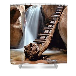 Ladder To Beyond Shower Curtain
