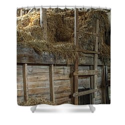 Ladder To The Loft Shower Curtain