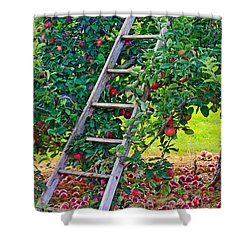 Ladder To The Top Shower Curtain