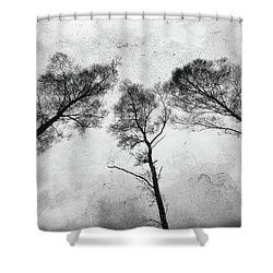 Ladies Of The Woods Shower Curtain