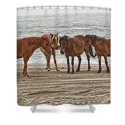 Ladies On The Beach Shower Curtain