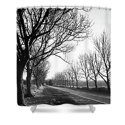 Lady Anne's Drive, Holkham Shower Curtain by John Edwards