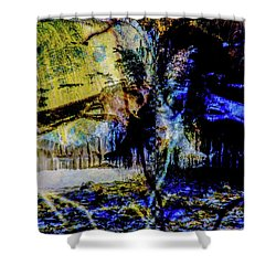 Lady At The Beach Through The Frozen Falls Shower Curtain