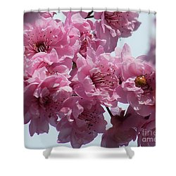 Shower Curtain featuring the photograph Lady Bug by Victor K