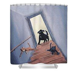 Lady Chases The Cats Down The Stairs Shower Curtain