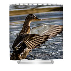 Lady Duck Shower Curtain