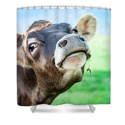 Lady Shower Curtain