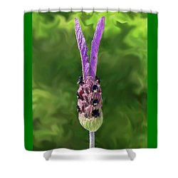 Lady Lavender Shower Curtain