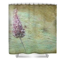 Shower Curtain featuring the photograph Lady Lavender by Wallaroo Images