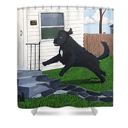 Lady Leaps The Small Front Stairs Shower Curtain