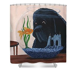 Lady Looks In The Fish Bowl For Mommy And Daddy Shower Curtain