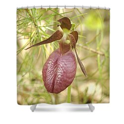 Lady Slipper Blossom Shower Curtain by Michael Peychich