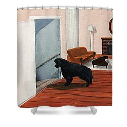 Lady Stares Down The Big Stairs Shower Curtain