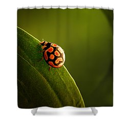 Ladybug  On Green Leaf Shower Curtain by Johan Swanepoel