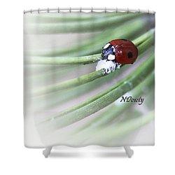 Ladybug On Pine Shower Curtain