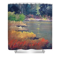 Shower Curtain featuring the painting Lagoon by Nancy Merkle