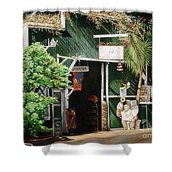 Lahaina Hoolealea Shower Curtain by Sandra Blazel - Printscapes