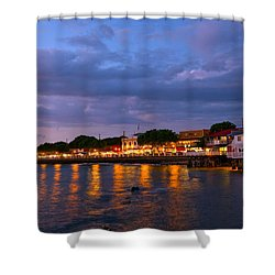 Lahaina Roadstead Shower Curtain by James Roemmling