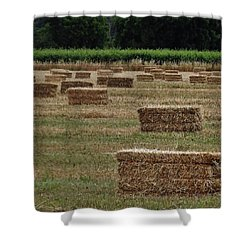 Shower Curtain featuring the photograph Lake Co 3 by Andrew Drozdowicz