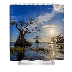 Lake Disston Cypress Paradise Shower Curtain