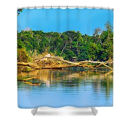 Lake In A Jungle Shower Curtain