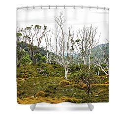 Lake Lilla Track 1 Shower Curtain by Lexa Harpell