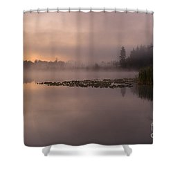 Lake Marsh Shower Curtain