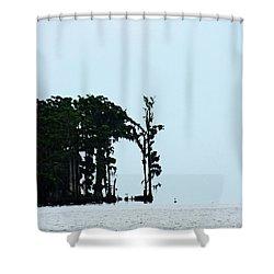 Lake Maurepas Cypress Shower Curtain by Lizi Beard-Ward