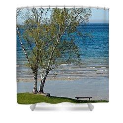 Shower Curtain featuring the photograph Lake Michigan Birch Tree Bench by LeeAnn McLaneGoetz McLaneGoetzStudioLLCcom