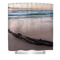Shower Curtain featuring the photograph Lake Michigan Driftwood by Adam Romanowicz