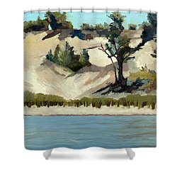 Lake Michigan Dune With Trees And Beach Grass Shower Curtain by Michelle Calkins