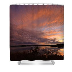 Lake Moss 2504b Shower Curtain