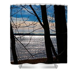 Shower Curtain featuring the photograph Lake Romance by Valentino Visentini