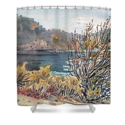 Lake Roosevelt Shower Curtain