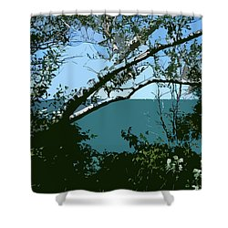 Lake Through The Trees Shower Curtain