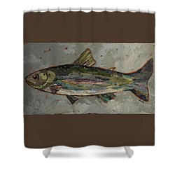 Lake Trout Shower Curtain