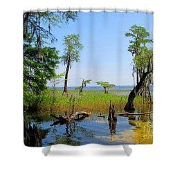 Lake Waccamaw Nc Shower Curtain