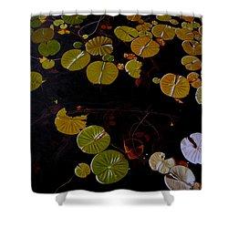 Shower Curtain featuring the painting Lake Washington Lilypad 8 by Thu Nguyen