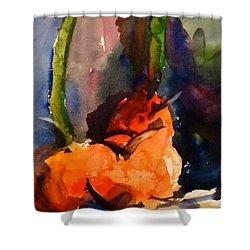 Lakelyn's Pumpkins Shower Curtain by Sandra Strohschein