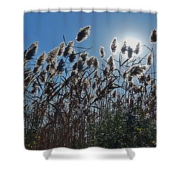 Lakeside Plants Shower Curtain