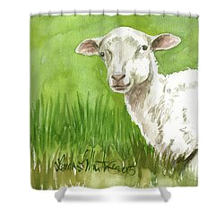 Lamb In Spring Shower Curtain