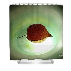 Lampionblume - Physalis Alkekengi Shower Curtain