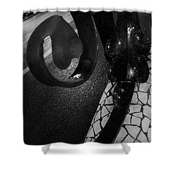Lamppost Of Passeig De Gracia Shower Curtain