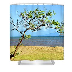 Lanai Leaning Shower Curtain