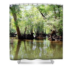 Shower Curtain featuring the photograph Land Of The Lost by Debra Forand