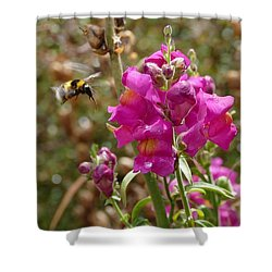 Landing Bumblebee Shower Curtain