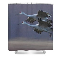 Shower Curtain featuring the photograph Landing Gear Down by Shari Jardina