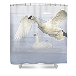 Shower Curtain featuring the photograph Landing In The Cold by Larry Ricker